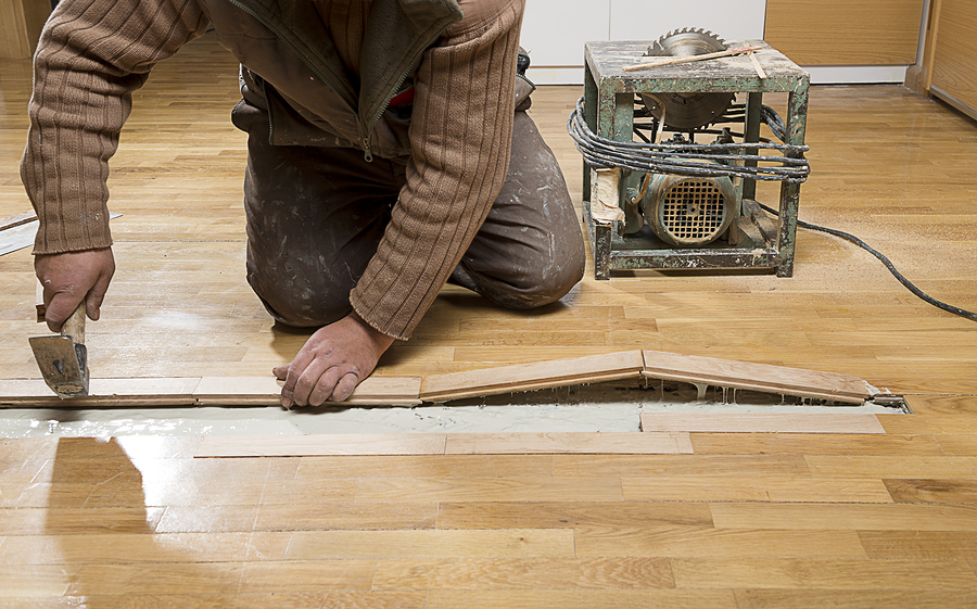 Manual worker fixing wooden floor ruined from moisture and water